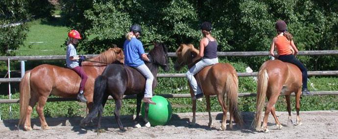 pukra_horseball