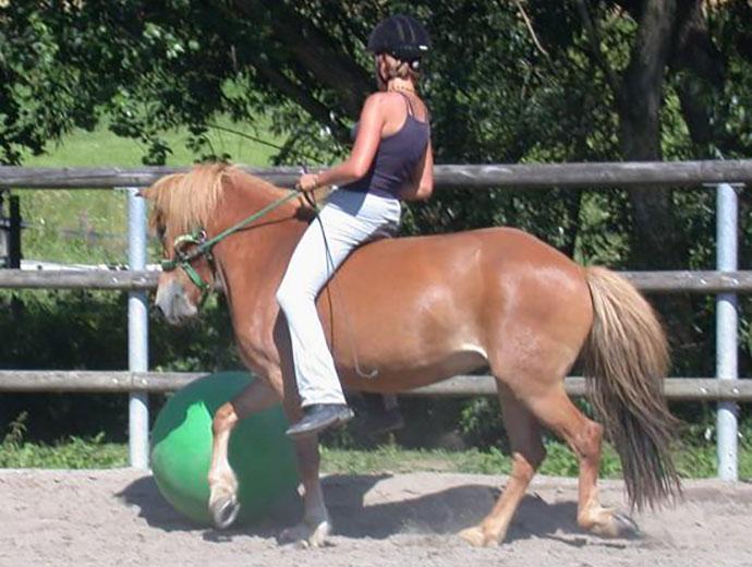 pukra_horseball2