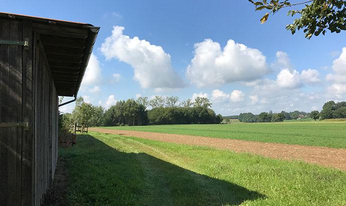 neuerhof3
