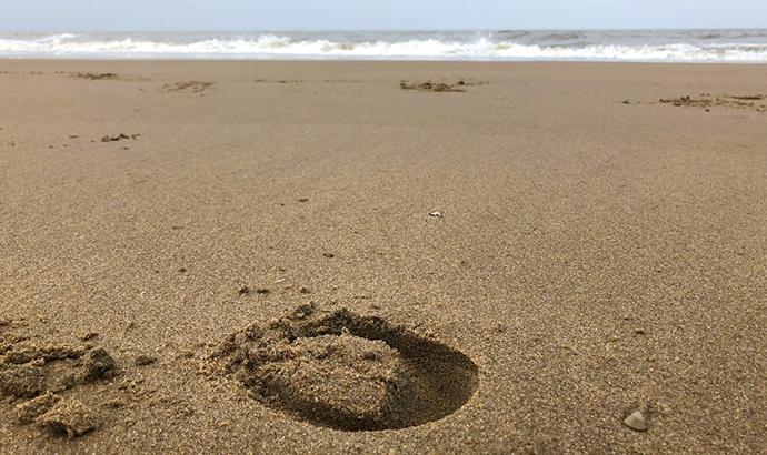 nl18_beach06