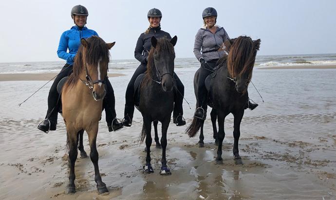 nl18_beach07